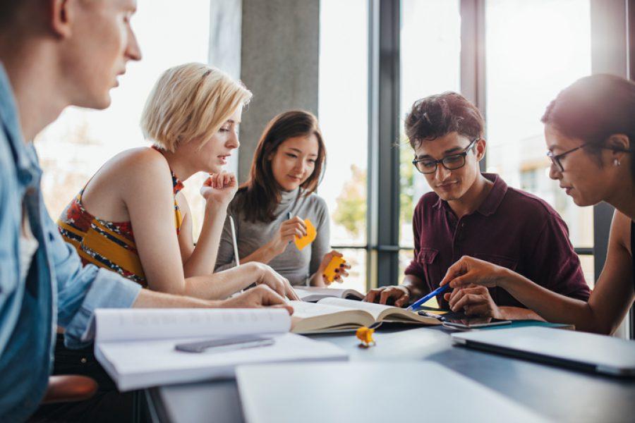 """(Lietuvių) Studijų finansavimas (""""Student finance"""")"""